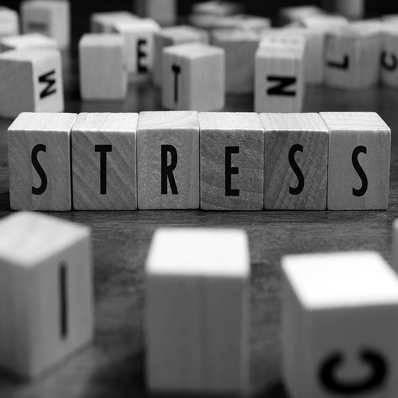 Stress als dikmaker